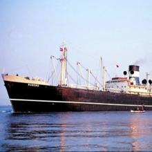 供应中国原材料海运