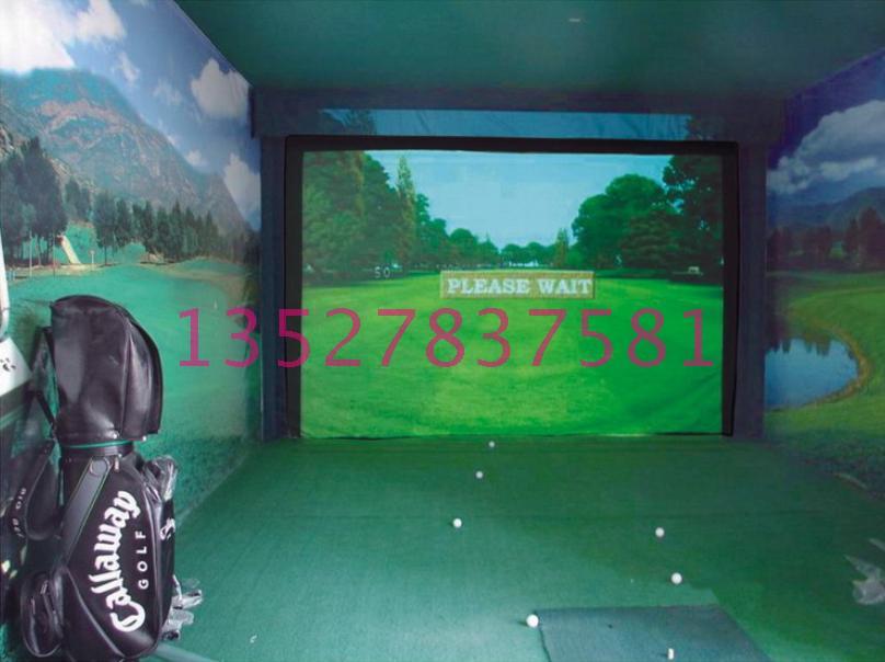 韩国进口精确模拟高尔夫图片