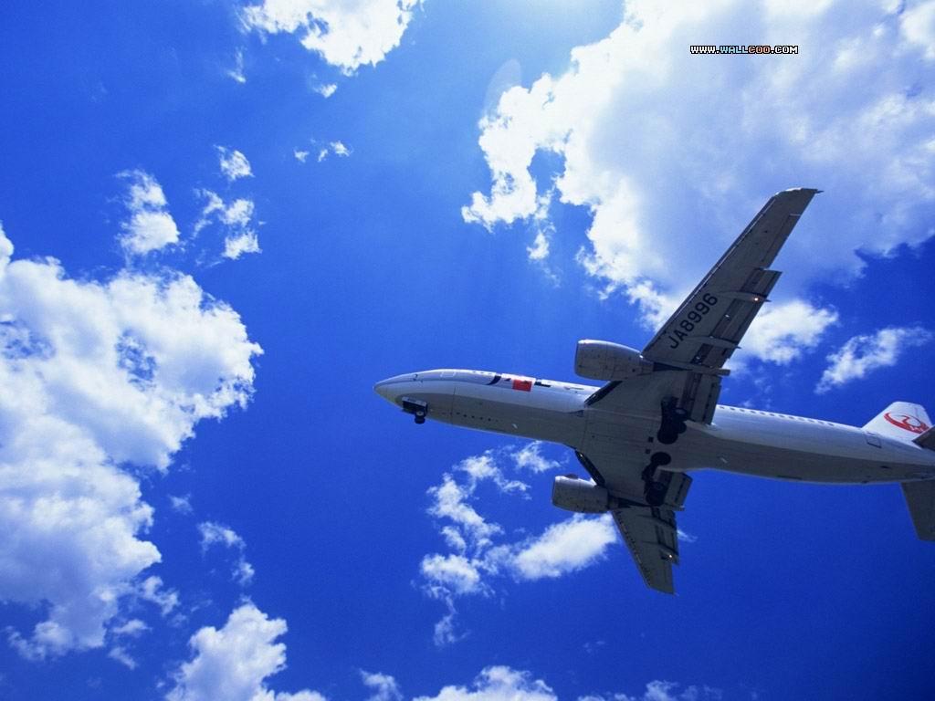 北京到刚果飞机图片