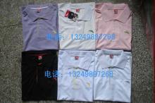 供应短袖运动服短袖运动裤POLO衫