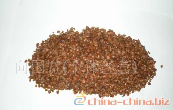供应柏木种子柏木种子价格柏木种子种植方法