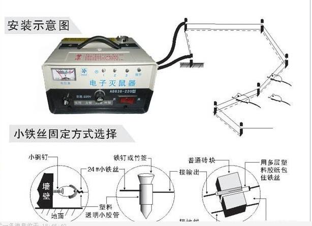 12伏电老鼠机电路图