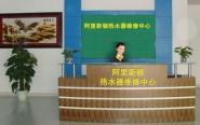 北京依马阿里斯顿壁挂炉专修点图片
