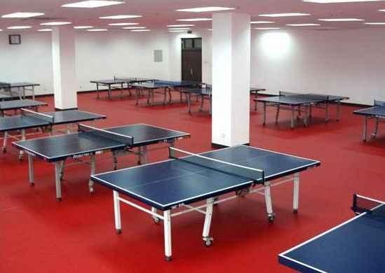 供应乒乓球地板乒乓球塑胶地板运动地板
