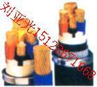 天津市 电力电缆/小猫牌电焊机电缆供应价格 供应小猫牌电焊机电缆供应价格