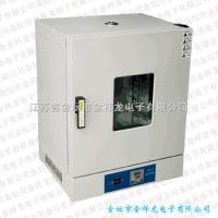 立式电热干燥箱101/202系列
