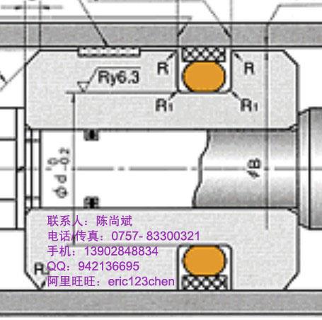 供应日本NOKSPGC油封