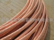铜包钢绞线生产厂家图片