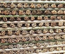 供应木材批发
