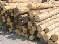 供应湖南木材