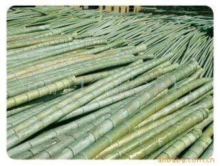 湖南衡阳供应楠竹