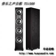 普乐之声音箱TSi500图片