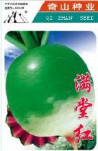 红心绿皮水果萝卜种子满堂红