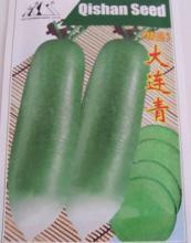 大连青萝卜种子 绿皮绿肉 高产抗病