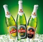 珠江经典啤酒11度图片