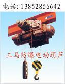 防爆电动葫芦图片
