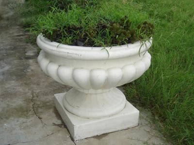 供应花盆批发,花盆制作,花盆直销 供应花盆杭州花盆  上一条:组合花盆