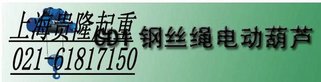 上海钢丝绳电动葫