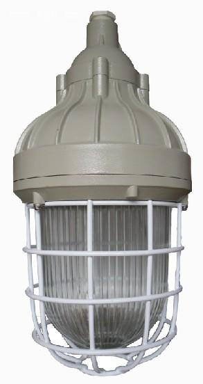 供应生产BAD81防爆节能灯