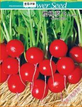 供应快乐农场蔬菜种子