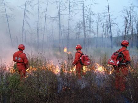 森林消防装备图片