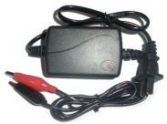 12V电瓶充电器图片