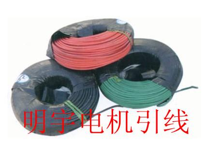 供应电机引线高压电机电机引线生产商
