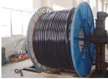 供应陕西各种型号YJLV电缆定做厂家,0.6/1KV电压交联电线电缆图片