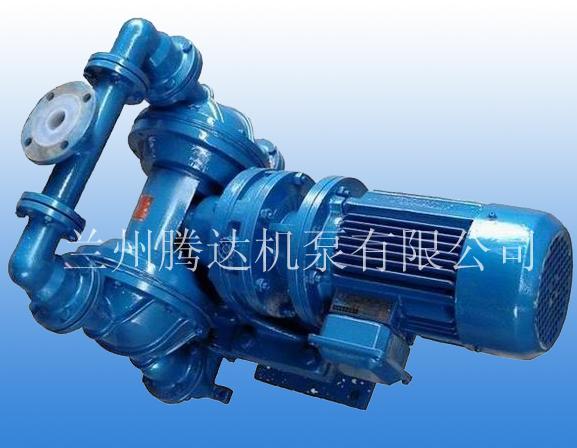 供应DBY电动隔膜泵/物料泵/糖浆泵/果酱泵/化工泵/胶泵图片