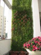 垂直绿化墙降温16度图片