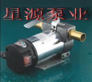 青岛直流油泵12V24V手提油泵图片