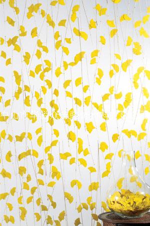 供应植物板,植物透光板,植物装饰板