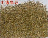 广西桂林大猪屎豆种子批发图片