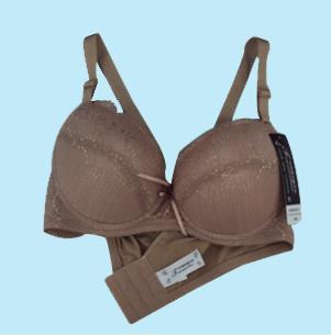 优质厂家给力供应:托玛琳文胸套装/磁疗文胸批发