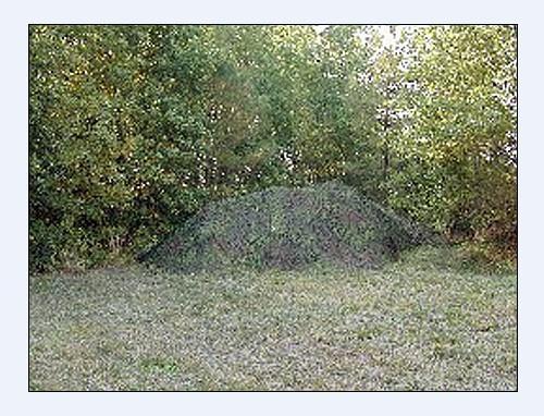 树叶迷彩伪装网图片