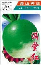 供应红心绿皮水果萝卜种子满堂红10克