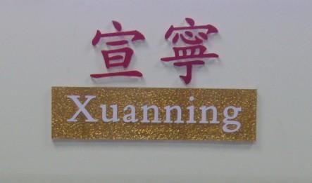 广州宣宁化工科技有限公司