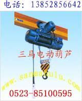 重庆钢丝绳电动葫芦图片